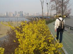 200804韓国 077