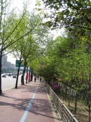 200804韓国 209