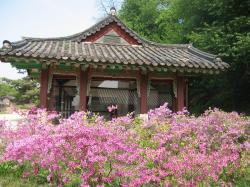 200805韓国 020