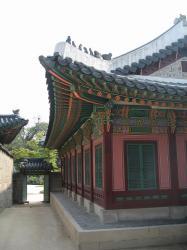 200805韓国 050