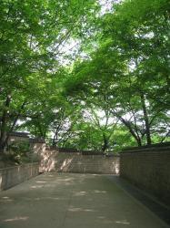 200805韓国 074
