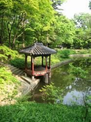 200805韓国 109