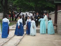 200805韓国 206