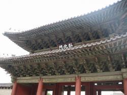 200805韓国 261