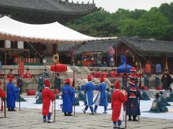200805韓国 250