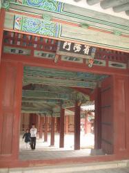 200805韓国 243