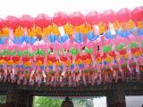 200805韓国 291