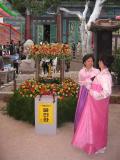200805韓国 313