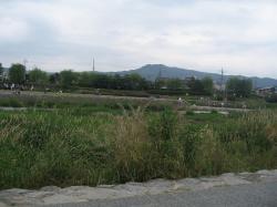 200806日本 465
