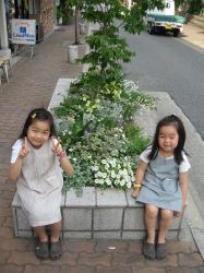 200806日本 451