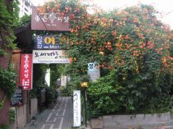 200807韓国 044