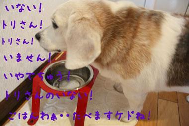 13_20080716145853.jpg