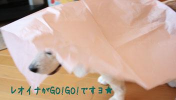18_20080629211802.jpg