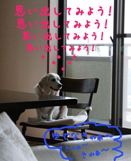 19_20080716150005.jpg