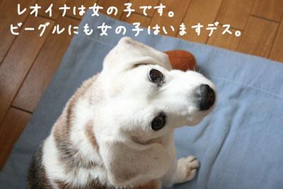 1_20080604205917.jpg