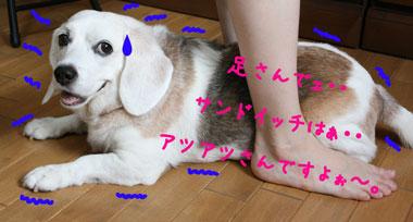 2_20080802151012.jpg