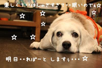 3_20080717185128.jpg