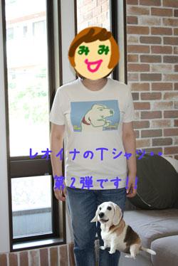 3_20080727130744.jpg