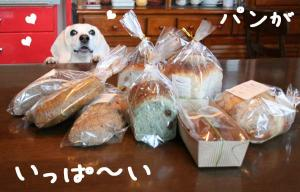 パンに囲まれて