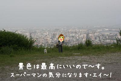 4_20080601212940.jpg