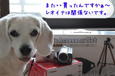 4_20080713150454.jpg