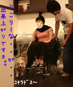 4_20080718151311.jpg