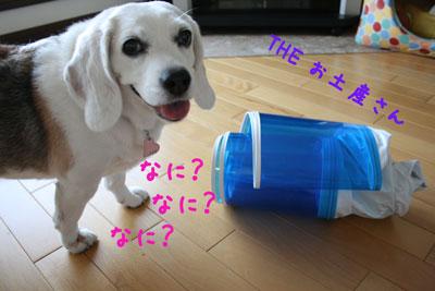 4_20080721215747.jpg