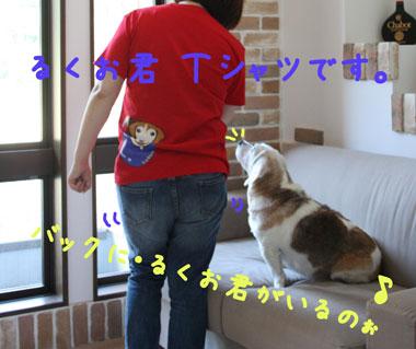 4_20080727130753.jpg