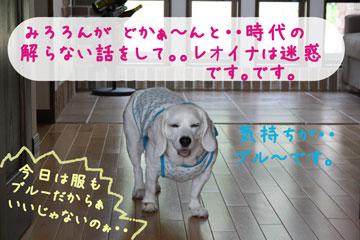 5_20080714095636.jpg