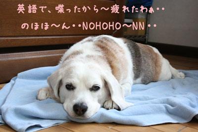 8_20080613154557.jpg