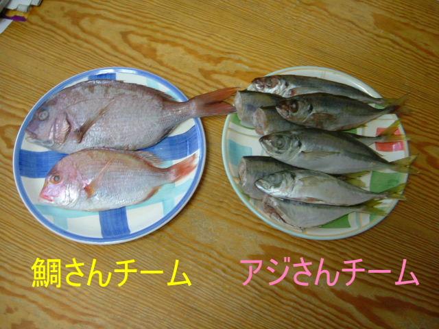 wanko0034a.jpg