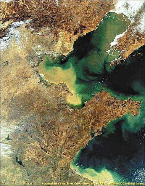 「死の海」と化した渤海