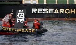 「偽」のプラカードを掲げるグリーンピースの日本人メンバー