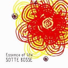 SOTTE BOSSE