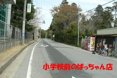 P1150802s.jpg