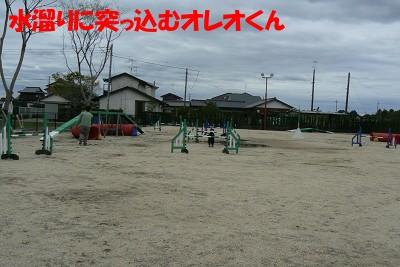P1160572s.jpg