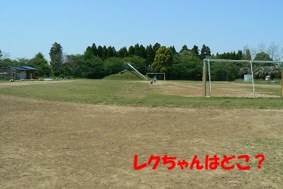 P1170365s.jpg