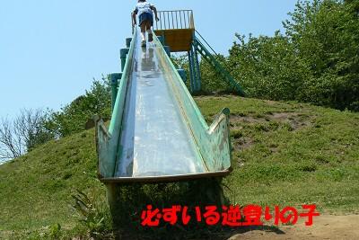 P1170392s.jpg
