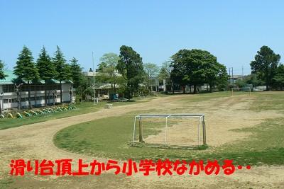 P1170421s.jpg