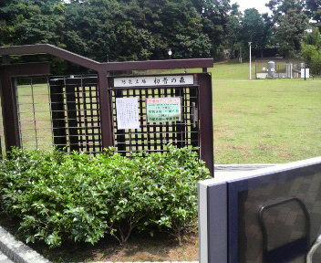 はちゅね公園1