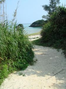 プライベートビーチへの道