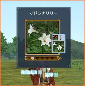 2008-04-23_23-08-52-010.jpg