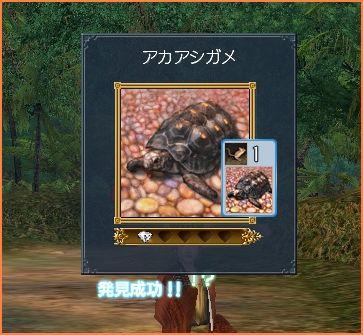 2008-04-27_17-44-14-005.jpg