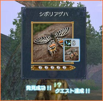 2008-05-28_21-33-25-006.jpg