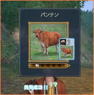 2008-05-28_21-33-25-018.jpg