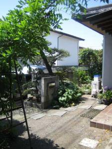 20080506-1.jpg