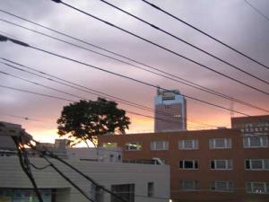 20080614-2.jpg
