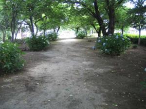 20080615-2.jpg