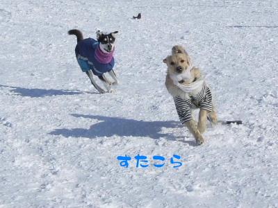 2006_0203b.jpg
