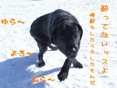 2006_0206f.jpg